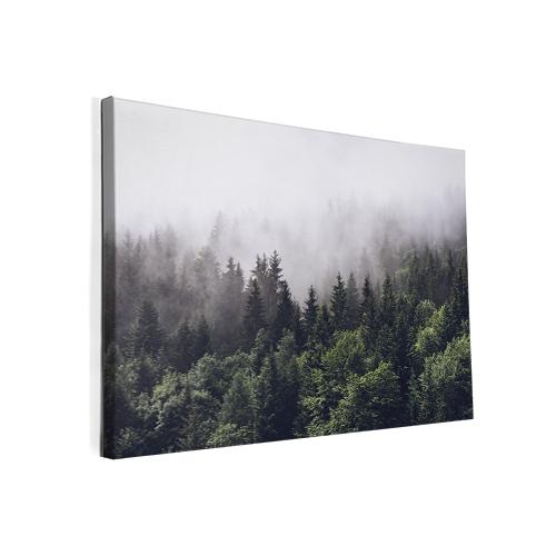 Foto op canvas Bos in de mist